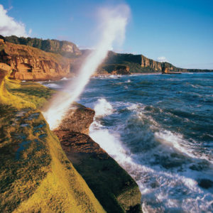 Blow holes - Punakaiki