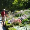 Botanic Gardens Herbaceous Border