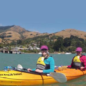 Guided Kayak Tour - Akaroa