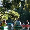 Kayaking through Milford Sounds