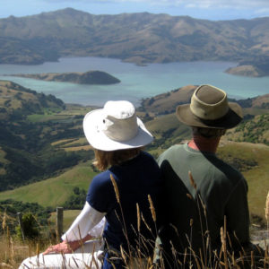 Akaroa Guided Day Tours